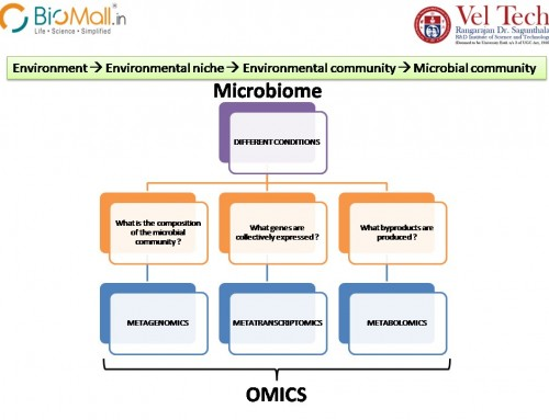 Biotechnology for Biological Wastewater Treatment